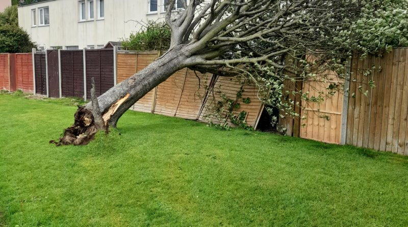 High Winds In Rowner