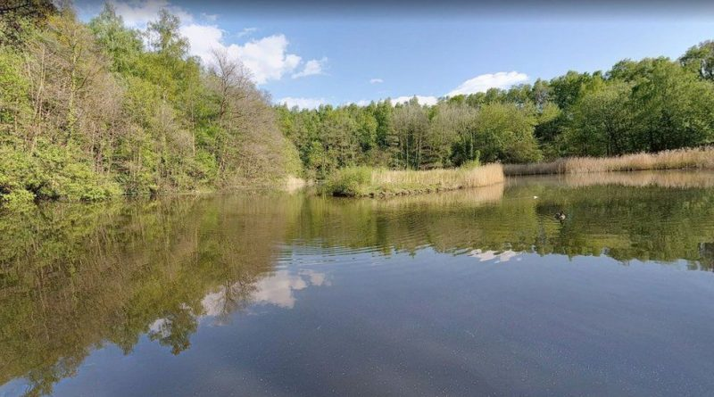 Urgent appeal after toddler found underwater at Swanwick Lakes