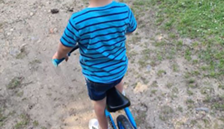 Police renew appeal over tragic Swanwick Lake toddler