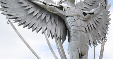 New sculpture 'flying high' at Daedalus Common
